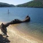 Sur les rives du lac de Villefort