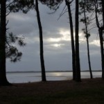 Rencontres Amicales : Balade à Arcachon