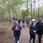 Visite dans le parc de Chambord